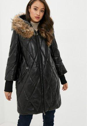 Куртка утепленная Снежная Королева CLL7071FW18. Цвет: черный