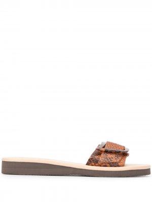 Сандалии с пряжками Ancient Greek Sandals. Цвет: коричневый