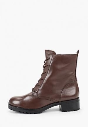 Ботинки Aldo. Цвет: коричневый