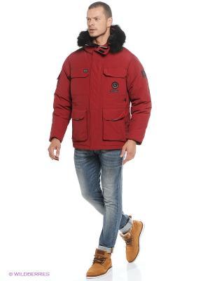 Куртка EVOLUTION. Цвет: бордовый