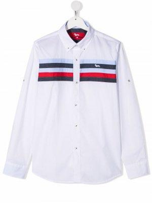 Поплиновая рубашка в полоску Harmont & Blaine Junior. Цвет: белый