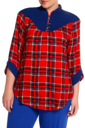 Блуза EVA Collection. Цвет: красная клетка