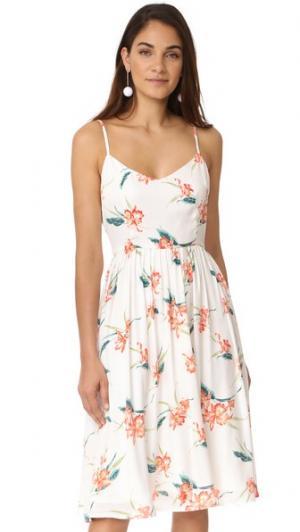 Миди-платье Lila Rio с принтом BB Dakota. Цвет: оптический белый