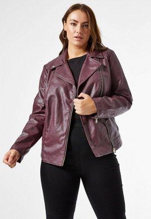 Куртка кожаная Dorothy Perkins Curve. Цвет: фиолетовый