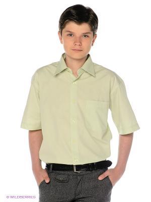Рубашка Davani. Цвет: светло-зеленый