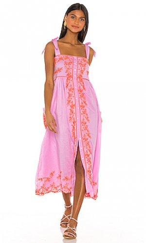 Платье миди cotton juliet dunn. Цвет: розовый