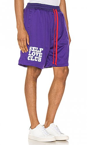 Баскетбольные шорты slc Lifted Anchors. Цвет: фиолетовый