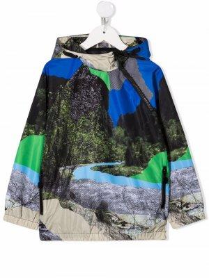 Куртка с капюшоном и графичным принтом Stella McCartney Kids. Цвет: синий