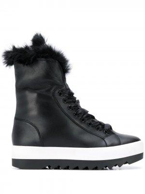 Ботинки Cosy Hogl. Цвет: черный