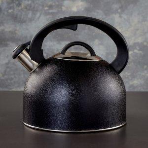 Чайник со свистком snow, 3 л, индукция, цвет чёрный Доляна
