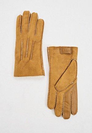 Перчатки UGG touchscreen. Цвет: коричневый