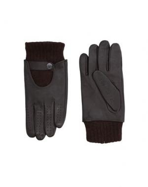 Перчатки VERSACE COLLECTION. Цвет: темно-коричневый