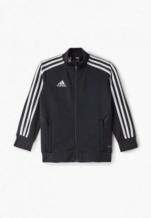 Олимпийка adidas TIRO19 TR JKTY. Цвет: черный