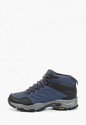 Ботинки трекинговые Ascot. Цвет: синий
