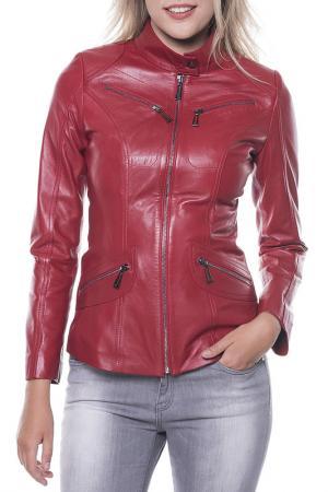 Куртка GIORGIO DI MARE. Цвет: red