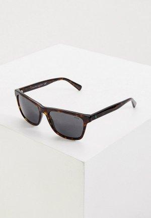 Очки солнцезащитные Polo Ralph Lauren PH4167 500387. Цвет: коричневый