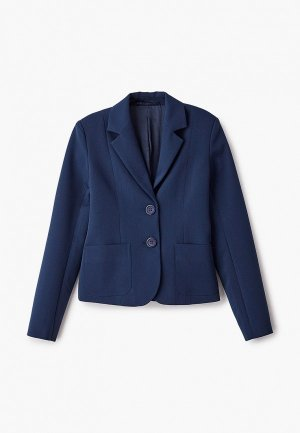 Пиджак RaiMaxx. Цвет: синий