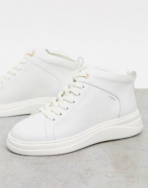 Высокие кожаные кроссовки кремового цвета Pippa-Белый Fiorelli
