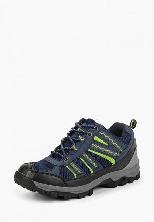 Ботинки трекинговые Beppi. Цвет: синий