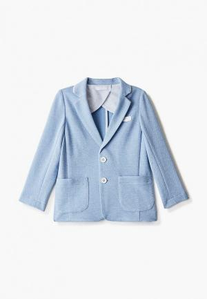 Пиджак Choupette. Цвет: голубой