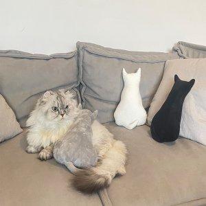 1шт Подушка для домашних животных в форме кошки случайного цвета SHEIN. Цвет: многоцветный