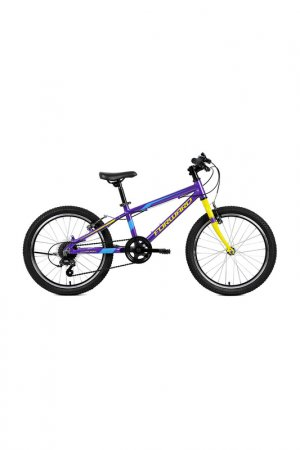 Велосипед RISE 20 2.0 2019 Forward. Цвет: фиолетовый, желтый