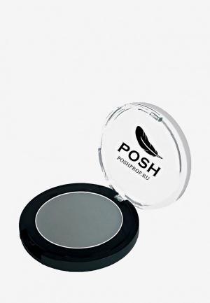 Тени для век Posh №3 Монохромные Мелкодисперсные высокопигментированные Влагостойкие Шиншилловый 3,5. Цвет: серый