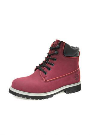Ботинки Ascot. Цвет: burgundy