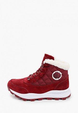 Ботинки Escan. Цвет: бордовый