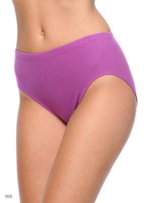 Трусы Comazo. Цвет: фиолетовый, фуксия