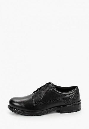 Туфли Ecco COHEN. Цвет: черный