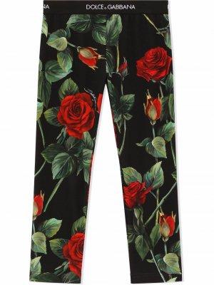 Легинсы с принтом Dolce & Gabbana Kids. Цвет: черный
