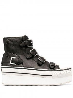Кроссовки на платформе Ash. Цвет: черный