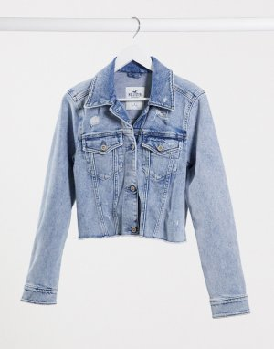 Синяя короткая джинсовая куртка -Синий Hollister