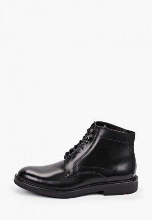 Ботинки Lloyd JIMMY. Цвет: черный