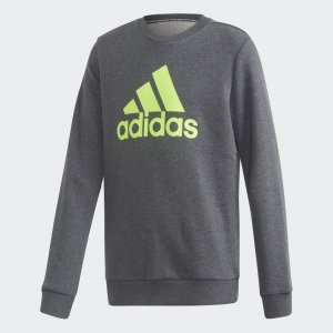 Джемпер Must Haves Crew Performance adidas. Цвет: серый