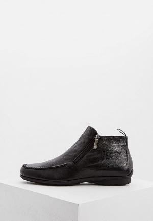 Ботинки Roberto Botticelli. Цвет: черный