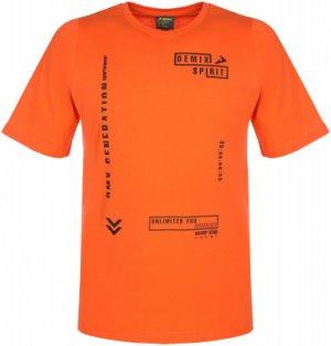 Футболка мужская , размер 50 Demix. Цвет: оранжевый