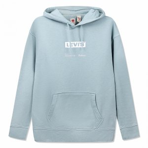 T3 Relaxd Graphic Hoodie Boxtab Levis. Цвет: бирюзовый
