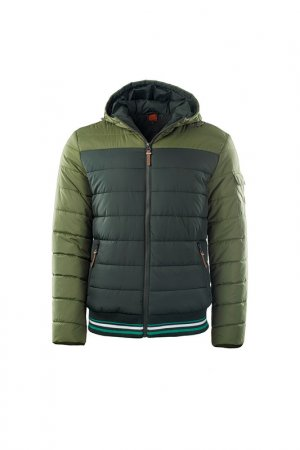 Jacket Iguana Lifewear. Цвет: green