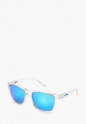 Очки солнцезащитные Arnette AN4255 258925. Цвет: голубой