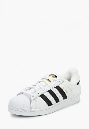 Кеды adidas Originals SUPERSTAR W. Цвет: белый