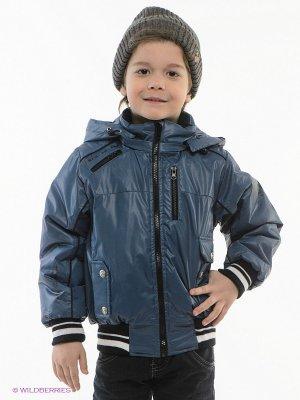 Куртка EVOLUTION. Цвет: синий, черный