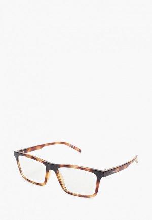 Очки солнцезащитные Arnette AN4274 26751W. Цвет: коричневый