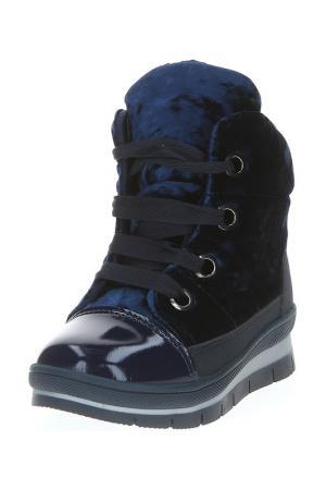 Ботинки Jog Dog. Цвет: синий бархат