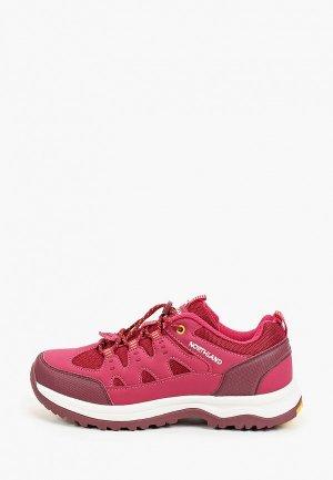 Ботинки Northland MOOSE. Цвет: красный