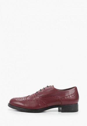 Ботинки Argo. Цвет: бордовый