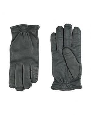 Перчатки JIL SANDER. Цвет: темно-зеленый