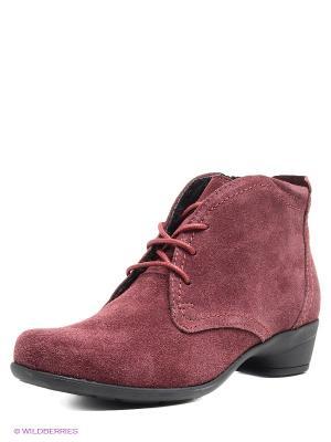 Ботинки Comodo. Цвет: бордовый