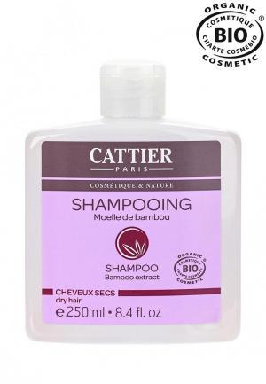 Шампунь Cattier для сухих волос с мякотью Бамбука